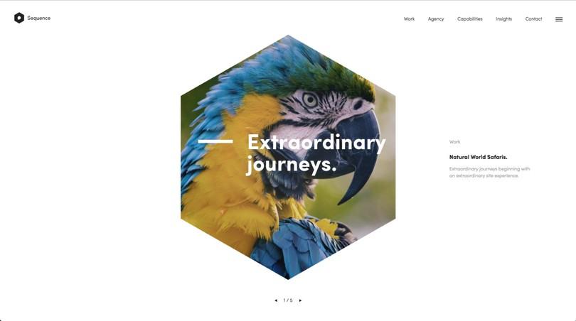 2017-web-tasarim