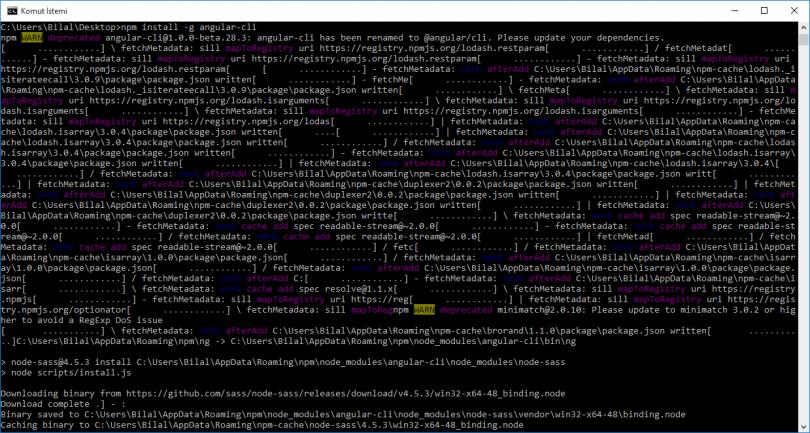 3-npm-install-angular-cli-810x433.png