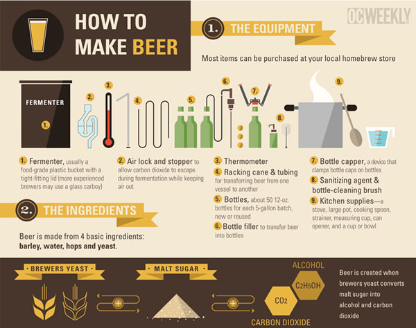 how-to-make-beer-infographic-freebie