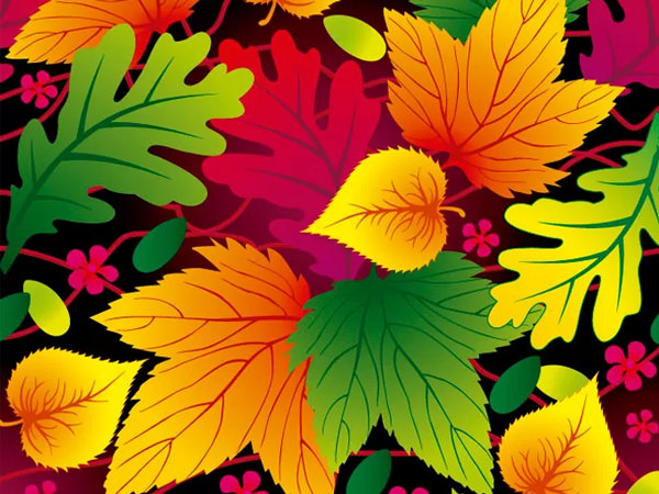 leaf-vector-shapes-freebie