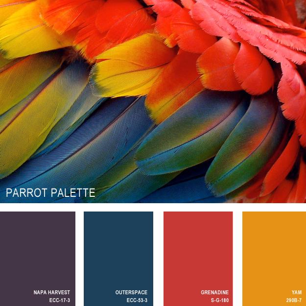 papagan-renk-paleti