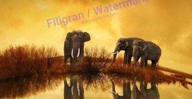 php-filigran-watermark